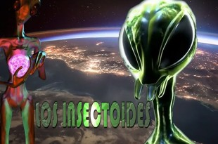LOS INSECTOIDES