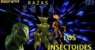 R A Z A S  Z E T A : LOS INSECTOIDES – Cap. 5